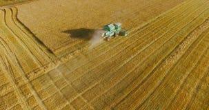 Εναέρια άποψη UHD 4K Η χαμηλή πτήση συνδυάζει τη θεριστική μηχανή συλλέγει το σίτο στον κίτρινο αγροτικό τομέα φιλμ μικρού μήκους