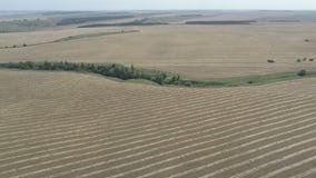 Εναέρια έρευνα για τους γεωργικούς τομείς το φθινόπωρο από το copter απόθεμα βίντεο