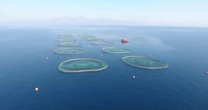 Εναέρια αγροκτήματα ψαριών υδατοκαλλιέργειας απόθεμα βίντεο