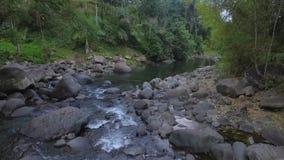 Εναέρια γυναίκα άποψης που προσεύχεται στην πέτρα, που πετά του ποταμού και του σαφούς νερού απόθεμα βίντεο