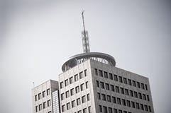εναέρια μεγάλη στέγη οικ&omicro Στοκ Εικόνες