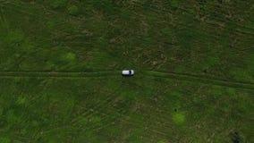 Εναέρια μύγα άποψης μακρυά από γκρίζο SUV στη μέση του πράσινου τομέα με τα δέντρα και τη χλόη φιλμ μικρού μήκους