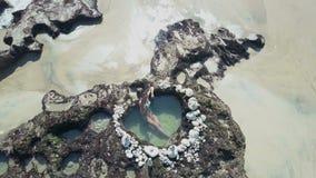 Εναέρια νέα γυναίκα άποψης στην παραλία πρεσών ωκεανός απόθεμα βίντεο