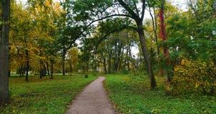 Εναέρια πορεία ιχνών φθινοπώρου πάρκων απόθεμα βίντεο
