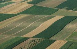 εναέρια πράσινη όψη πεδίων στοκ φωτογραφία με δικαίωμα ελεύθερης χρήσης
