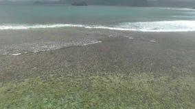 Εναέρια ρόδινη παραλία απόθεμα βίντεο