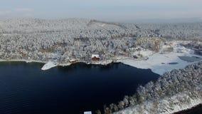 Εναέρια τακτοποίηση άποψης στην όμορφα χειμερινά λίμνη και το δάσος απόθεμα βίντεο