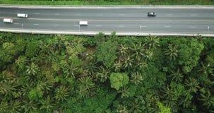 Εναέρια τοπ άποψη από Copter στην εθνική οδό με τα αυτοκίνητα και τις μοτοσικλέτες στο δάσος φοινίκων φιλμ μικρού μήκους