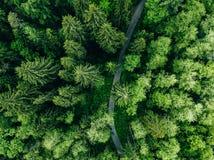 Εναέρια τοπ άποψη της εθνικής οδού στο πράσινο θερινό δασικό αγροτικό τοπίο στη Φινλανδία στοκ εικόνα με δικαίωμα ελεύθερης χρήσης