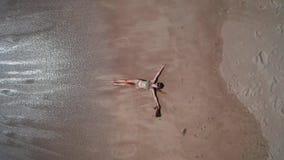 Εναέρια τοπ άποψη της ευτυχών γυναίκας και του σκυλιού στην αμμώδη παραλία φιλμ μικρού μήκους