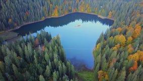 Εναέρια τοπ άποψη της λίμνης απόθεμα βίντεο