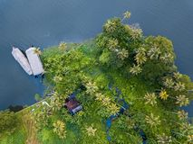 Εναέρια φωτογραφία Alappuzha Ινδία Στοκ Εικόνες