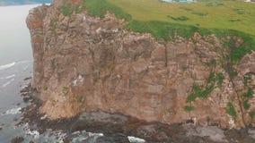 εναέρια όψη Άριστο πέταγμα στον αέρα Seagulls που πετούν στο κατώτατο σημείο Copter που πετά πέρα από έναν απότομο βράχο φιλμ μικρού μήκους