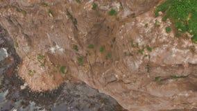 εναέρια όψη Άριστο πέταγμα στον αέρα Seagulls που πετούν στο κατώτατο σημείο Copter που πετά πέρα από έναν απότομο βράχο απόθεμα βίντεο