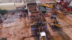 εναέρια όψη Κούτσουρα ή ξυλεία φορτίων μηχανών ή φορτωτών στο μεταφορέα Ξύλινη επεξεργασία σε εγκαταστάσεις ξυλουργικής Ξύλινος α απόθεμα βίντεο