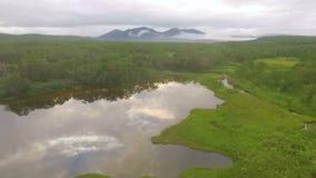 εναέρια όψη Πέταγμα πέρα από τη λίμνη στο copter Πέταγμα μέσω treetops απόθεμα βίντεο