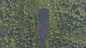 εναέρια όψη Πέταγμα πέρα από το δάσος Στοκ φωτογραφίες με δικαίωμα ελεύθερης χρήσης