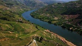 εναέρια όψη Όμορφοι αμπελώνες στην κοιλάδα ποταμών Douro Πορτογαλία απόθεμα βίντεο