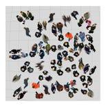 εναέρια όψη Στοκ φωτογραφίες με δικαίωμα ελεύθερης χρήσης