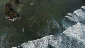 Εναέρια surfers άποψης στα κύματα Catanduanes, Φιλιππίνες απόθεμα βίντεο