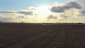 Εναέριοι γύροι αυτοκινήτων άποψης στο δρόμο στον τομέα στο ηλιοβασίλεμα Ο κηφήνας ακολουθεί το αυτοκίνητο στο σχεδιάγραμμα απόθεμα βίντεο