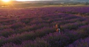 Εναέριος βλαστός της συνεδρίασης μικρών κοριτσιών στον ανθίζοντας τομέα lavender σε σε αργή κίνηση φιλμ μικρού μήκους