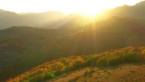 Εναέριος κινηματογράφος κηφήνων 4k του δάσους φθινοπώρου στα φω'τα ηλιοβασιλέματος απόθεμα βίντεο
