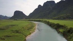 Εναέριος μπλε ποταμός άποψης με τις αμμώδεις τράπεζες μεταξύ των πράσ απόθεμα βίντεο
