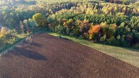 Εναέριος πυροβολισμός του τρακτέρ που οργώνει το μαύρο χώμα κοντά στο δασικό ηλιοβασίλεμα φθινοπώρου απόθεμα βίντεο