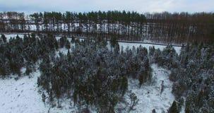 Εναέριος πυροβολισμός της κοιλάδας ιουνιπέρων στη κομητεία Kaunas, Λιθουανία φιλμ μικρού μήκους