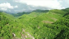 Εναέριος πυροβολισμός των όμορφων πράσινων λόφων βουνών που καλύπτονται με δασικό Stara Planina, Σερβία φιλμ μικρού μήκους