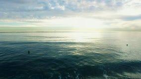 Εναέριος πυροβολισμός των surfers στη παράλια Ειρηνικού στην ανατολή φιλμ μικρού μήκους
