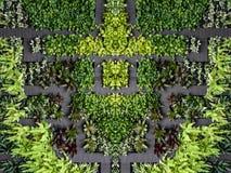 Εναέριος φιλικός κήπος eco άποψης με το ξύλινο μονοπάτι Στοκ εικόνα με δικαίωμα ελεύθερης χρήσης