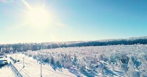 Εναέριο άποψης δάσος βουνών χειμερινής εποχής χιονώδες με το άμεσο φως του ήλιου απόθεμα βίντεο