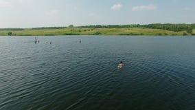 Εναέριο βίντεο μιας γυναίκας που κολυμπά στη λίμνη στην επαρχία φιλμ μικρού μήκους