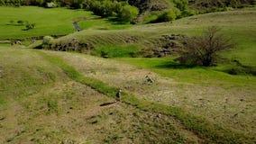 Εναέριο βίντεο του ατόμου που περπατά στη γραφική κοιλάδα στην πράσινη χλόη προς έναν ποταμό Ακολουθώντας πυροβολισμός κηφήνων το φιλμ μικρού μήκους