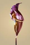 Εναέριο κορίτσι ακροβατών acrobatics που απομονώνεται Στοκ εικόνες με δικαίωμα ελεύθερης χρήσης