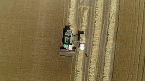 Εναέριο μήκος σε πόδηα κηφήνων Η θεριστική μηχανή ανατρέπει το σιτάρι σε ένα φορτηγό r φιλμ μικρού μήκους