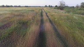Εναέριο μήκος σε πόδηα του οδηγώντας ποδηλάτου αγοριών όμορφο οδικό καλοκαίρι ημέρας επαρχίας Γεωργικό πεδίο το καλοκαίρι Ουκρανι απόθεμα βίντεο