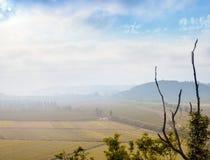 Εναέριο ομιχλώδες τοπίο με τους καλλιεργημένους τομείς και τα νεκρά άκρα στοκ εικόνα