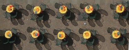 εναέριο πλάνο καφέδων Στοκ φωτογραφία με δικαίωμα ελεύθερης χρήσης