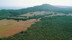 Εναέριο πράσινο αγροτικό τοπίο άποψης φιλμ μικρού μήκους