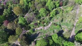 Εναέριο videography πάρκο άνοιξη, ξύλα φιλμ μικρού μήκους