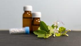Εναλλακτικά φάρμακα - ομοιοπαθητικά globules ζάχαρης και υγρά μπουκάλια ουσιών με τα πράσινα φύλλα και το άσπρο λουλούδι στοκ εικόνες με δικαίωμα ελεύθερης χρήσης
