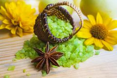 εναλλακτική ιατρική salt spa θεραπεία λουτρών helthcare Άρωμα της φύσης aromatherapy πράσινο minerals spa καλοκαίρι αρώματος χορτ Στοκ Φωτογραφία