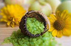 εναλλακτική ιατρική salt spa θεραπεία λουτρών helthcare Άρωμα της φύσης aromatherapy πράσινο minerals spa καλοκαίρι αρώματος χορτ Στοκ φωτογραφίες με δικαίωμα ελεύθερης χρήσης