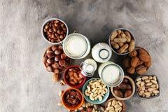Εναλλακτικοί τύποι γαλάτων Γαλακτοκομικό γάλα υποκατάστατων Vegan στοκ εικόνα με δικαίωμα ελεύθερης χρήσης