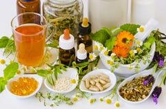 εναλλακτικός δίσκος biloba λουτρών μπαμπού ginkgo items medicine spa Βοτανική θεραπεία ιατρικά φυτά Στοκ φωτογραφία με δικαίωμα ελεύθερης χρήσης