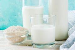 Εναλλακτικό μη γαλακτοκομικό γάλα Vegan στοκ εικόνες με δικαίωμα ελεύθερης χρήσης