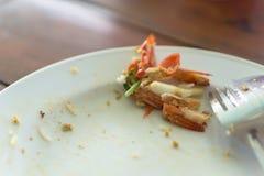 Εναπομείναντας ταϊλανδικά τρόφιμα Στοκ Εικόνα